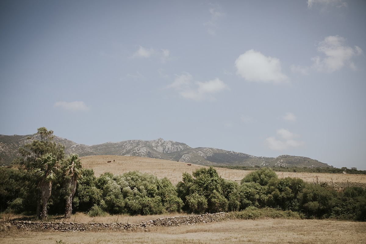 Fotografía campo Tarifa